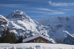 The Chalet in front of the Jungfrau Mountain. Izakigur no. 6058 6059 . 19/02/2018 13:11:11 . (Izakigur) Tags: jungfrau mürren berneroberland thejungfrauregion berneralpen kantonebern schweiz eiger mönch panorama bernesehighlands oberlandbernois cantondeberne luz lumière light licht ضوء אור प्रकाश ライト lux światło свет ışık switzerland svizzera liberty izakigur flickr feel europe europa dieschweiz ch lasuisse musictomyeyes nikkor nikon suiza suisse suisia suizo swiss سويسرا laventuresuisse myswitzerland schwyz suïssa nikond810