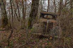Primaquatre Sport (Jacadit, L'empreinte du temps) Tags: car oldschool auto renault france canon urbex decay foret forest nature 17mm primaquatre