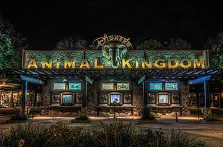 Animal Kingdom   Walt Disney World Resort