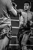 Fight Night: Jack Steel (Edinburgh)  v Ricardo Scarfone (GU) (FotoFling Scotland) Tags: fightnight gcalmuaythai glasgow glasgowcaledonianuniversity hamishwoodlecturehall muaythai sport thaiboxing boxing fight