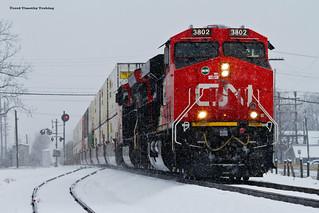 Snowy CNs