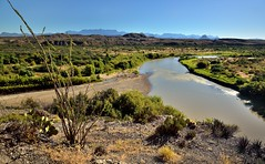 The Rio Grande Flows on By... (Big Bend National Park)
