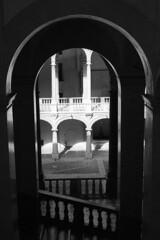 Palazzo dei Normanni  - Palermo - May 2013 (cava961) Tags: palermo analogue analogico monochrome monocromo bianconero bw