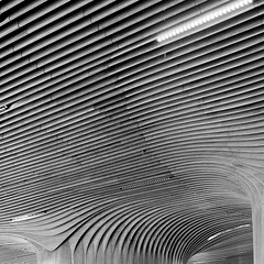 (morbs06) Tags: citylife generalitower milan milano zahahadid abstract architecture building bw ceiling city curves geometry light lines pattern repetition shadow square stripes texture wood mall