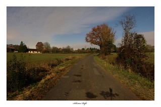 Midnight road (France - Sarthe)