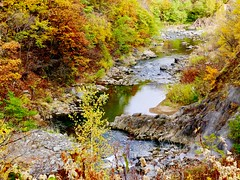 Dry creek (Thanathip Moolvong) Tags: japan hokkaido leica dlux foliage leaves color autumn vacation