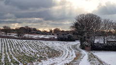 Winter Scene (markkilner) Tags: canon eos 80d dslr kent england kilner 50mm winter snow margate thanet 4k broadstairs stpeters