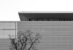 - bmw - (-wendenlook-) Tags: sw bw architektur architecture grafic graphic panasonic dmcg6 123528 70mm 1500 f63 iso160
