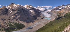Saskatchewan Glacier from Parker Ridge (John Payzant) Tags: parker ridge banff park alberta canada panorame hdr
