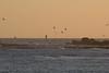 IMG_8669 (armadil) Tags: mavericks beach beaches californiabeaches bird birds sunset flying flocks