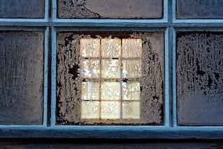 Flowers on your window  (Explored XII.III.)