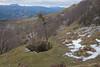 Nevera de Areatza 2018 #DePaseoConLarri #Flickr -12 (Jose Asensio Larrinaga (Larri) Larri1276) Tags: neveradeareatza nevera areatza villaro bizkaia euskalherria basquecountry patrimoniohistorico parquenaturaldegorbeia montaña naturaleza patrimonio