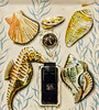 Light Switch Cover 03-11-18 (MelenaMe) Tags: macromondays imperfection lightswitchcover cover light plate lightplate sea star seahorse shell shells screw screws