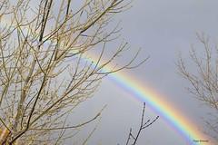 Arcoiris (Pepa Morente ( 2.200.000 de VISITAS )) Tags: arcoiris colores nubes color nublado