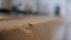 71/365 ---------------- chipped (ghiro1234 [♀]) Tags: macromondays imperfection chipped scheggiato pianodilavoro cucinadicasamia cucina top robertaghidossi macro hmm ghiro ghiro1234 bokeh 169 2018myproject365