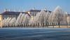 hoar frost palace (werner boehm *) Tags: wernerboehm schlossschleisheim munich hoarfrost raureif architektur