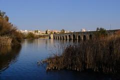 XE3F8805 (Enrique Romero G) Tags: puente romano puenteromano roman bridge romanbridge guadiana mérida merida extremadura españa spain fujixe3 fujinon18135