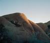Granite (ADMurr) Tags: california joshua tree national park granite monzo rolleiflex 28 f zeiss planar 80mm crop kodak ektar daa573 6x7 mf