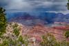 Grand Canyon 2 (benakersphoto) Tags: grandcanyon grand canyon nationalpark natural landscape nature tree color colorful red orange clouds cloudy rain az arizona