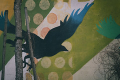 River of Crows (annapolis_rose) Tags: vancouver eastvan mcleandrive mural streetart riverofcrows birds crows