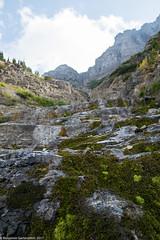 20170910-DSC_0359.jpg (bengartenstein) Tags: canada banff glacier nps glaciernps montana canada150 mountains moraine morainelake manyglacier lakelouise hiking fairmont