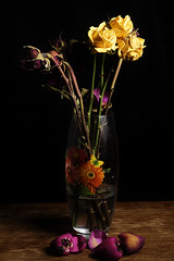 Flowers in the Vase (donnicky) Tags: blackbackground blossom bouquet contrast decay decoration flowers indoors nopeople old oldfashioned petal publicsec stilllife studioshot table vase yellow