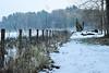 hff 57 (Harry McGregor) Tags: fencedfriday fence snow dumfrieshouse trees woodland scenic winter harrymcgregor nikon d3300 cumnock ayrshire scotland 20 january 2018