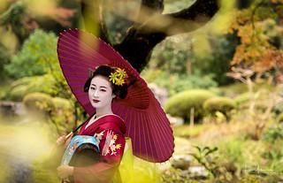 Mameryu - Maiko in Kyoto 18