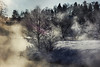 (Malykhanov) Tags: trip travel trees tree woods wood winter water forest fog light landscape nature mist atmosphere snow cold russia rays