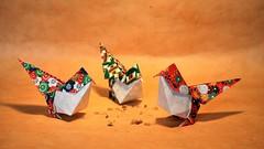 Geometric birds, Roman Diaz (pierreyvesgallard) Tags: bird geometric origami roman diaz animals paper folding papercraft