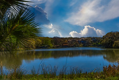 Lake Austin and the Living is Easy (Postcards From Texas) Tags: lake austin texas shoreline laguna gloria trees clouds blue birds