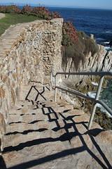 IMG_7616 (mudsharkalex) Tags: california pacificgrove pacificgroveca step steps stairs