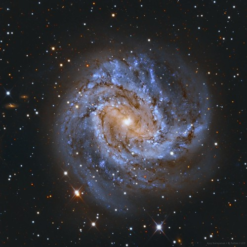 The Southern Pinwheel Galaxy, Messier 83 #Explored