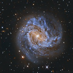 The Southern Pinwheel Galaxy, Messier 83 #Explored (ajynrynn) Tags: pinwheel galaxy messier hydra sky space lco lascumbres dso astrophotography astronomy spiral barredspiral night m83 messier83 longexposure chile southafrica telescope ctio sao deepsky astro deepspace constellation interstellar extragalactic science physics ccd