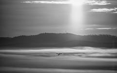 good morning (Florian Grundstein) Tags: clouds skyscape simple minimalism cloudporn landscape oberpfalz bayern naabtal über den wolken mountain sunrise morning monochrome