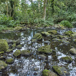 Maunawili Falls Trail thumbnail