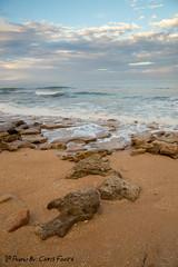 Beautiful View (ChrisF_2011) Tags: florida marineland rivertosea beach scenic landscape sand coquina