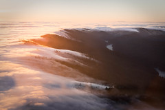 Tucked in for the Night (Rebecca Haranczak) Tags: sunset karlthefog clouds mountains aerial nature westcoast california norcal bayarea inflight intheair sunshine weather sony sonya7r sonyalpha gmaster