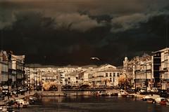2018 03 07 Sète IR 720nm - 07 (Mister-Mastro) Tags: 720nm frankreich infrared ir sè̀te sète france fullspectrum city panorama dull möwe seagull