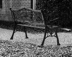 Bench In the Spring Snow (that_damn_duck) Tags: blackwhite bench snow springtime spring bw blackandwhite