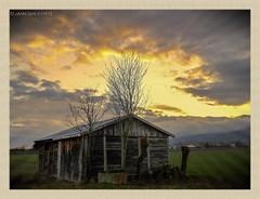 Juste une cabane en fin de journée (jamesreed68) Tags: alsace hautrhin 68 grandest france nuage paysage nature samsung wb30fwb31fwb32f berrwiller