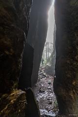 Chasm (palbion) Tags: springbrook queensland australia au