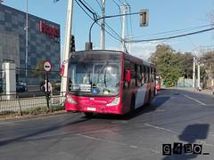 RedBus Urbano (G4bo__) Tags: caio mondego marcopolo gran viale volvo b7rleo5oou b9salf transantiago subus express redbus quilicura zapadores ohiggins