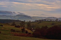 The Welsh Mountains (AM5555) Tags: countryside nature outside outdoors rural senice serene day nikkor wales sheep trees contrast lens light colours colourful fog mist landschaft