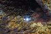 Journey to the centre of the Earth (elisabethkrausmann) Tags: volcano crater magma lava iceland cave