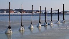 On a row (Steenjep) Tags: vinter winter jylland danmark denmark water vand fjord is ice virksund hjarbækfjord havn harbour sea snow sne