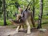 dinosaur Stegosaurus (Ciddi Biri) Tags: eurypoda jurassic stegosaurus triassic animal dinosaur fossil giant paleontology genasauria kitlens m43turkiye olympustürkiye olympusturkiye getolympus dinozor olympus25mmf18