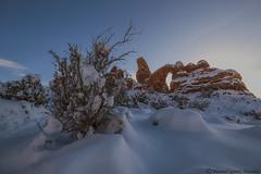 Turrent Arch (Manuel G.S.) Tags: arches national park usa west nikon d810 samyan utah turrent arch winter manoleison december 2017 nature rock