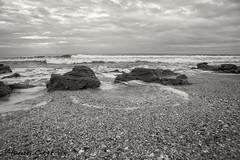 Along the Beach (ChrisF_2011) Tags: florida marineland rivertosea beach scenic landscape sand coquina bw blackwhite monochrome