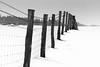 vanishing fence (Anthony White) Tags: horton dorset england unitedkingdom gb blackandwhite bw blackwhite snow hill winter slope barbedwire depthoffield countryside hff posts fencedin shadows